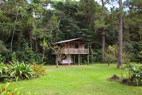 Tree House Deluxe  at Finca Ixobel