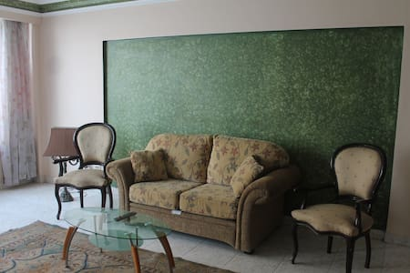 Furnished nile side view apartment - Cairo - Apartment
