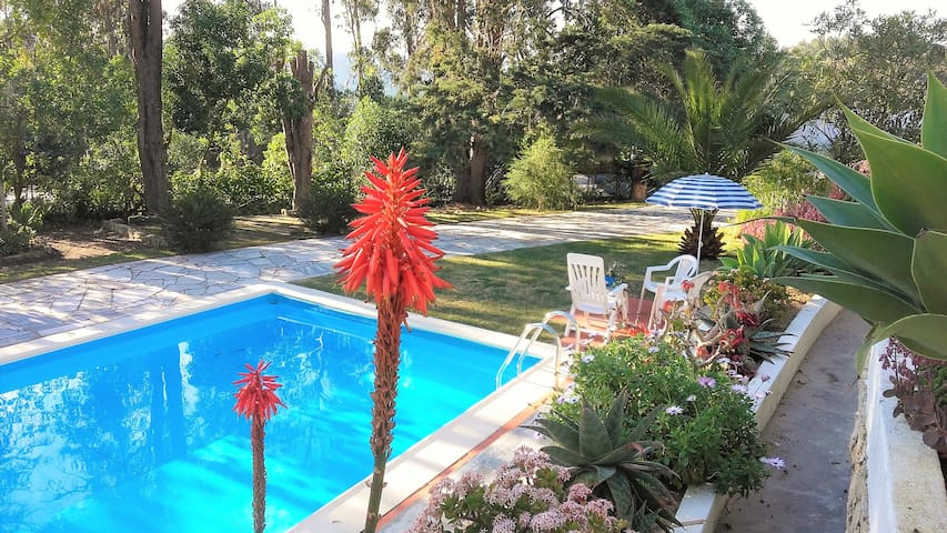 Country house close to Ericeira beaches - Mafra - Hus