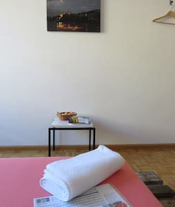 All you need, simple room in central appartement!