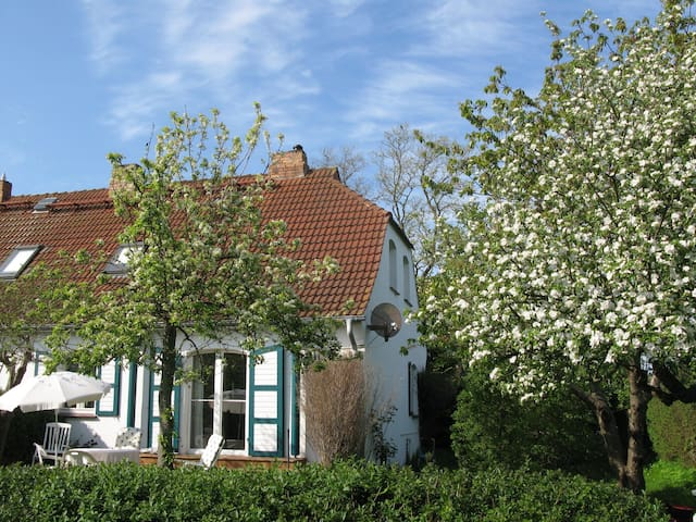 Altes Haus der Seefahrtschule Wustrow Grünbaum