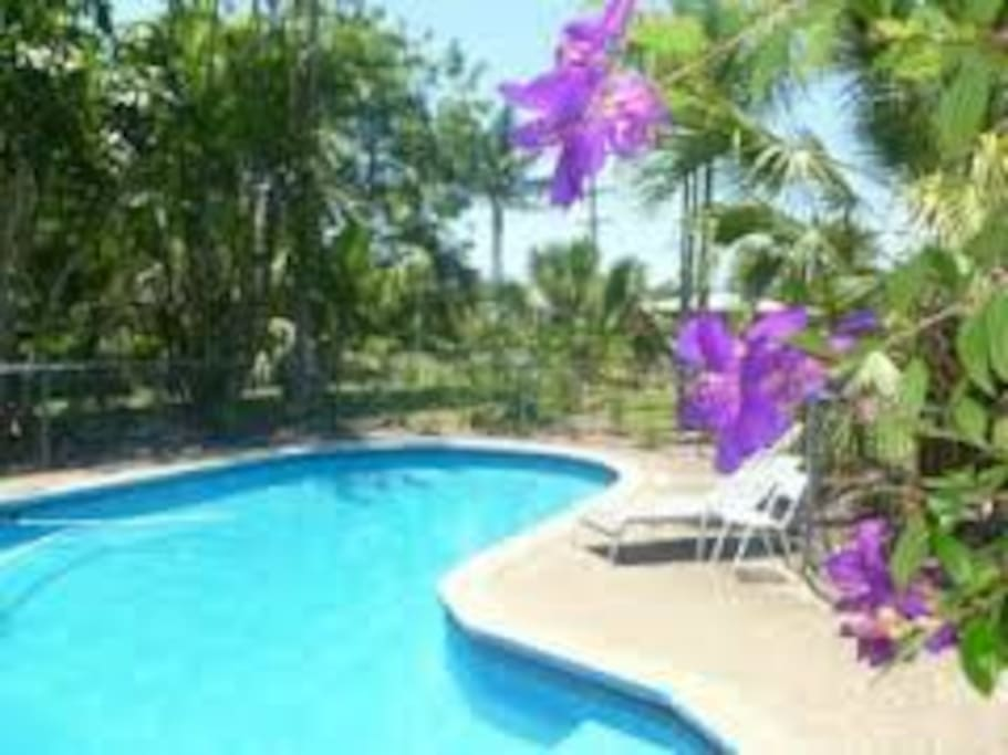 Our refreshing pool is surrounded by established gardens and peaceful birdlife.