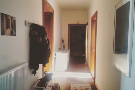 Cozy room in the city centre of Ljubljana! - Apartment