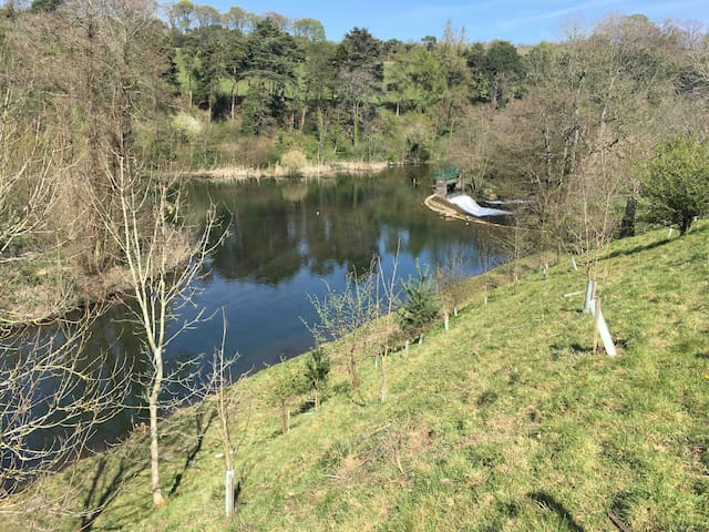 Riverside walk to Ashford