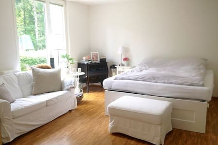Beautiful clean calm bright St. Gallen Studio Loft - Sankt Gallen