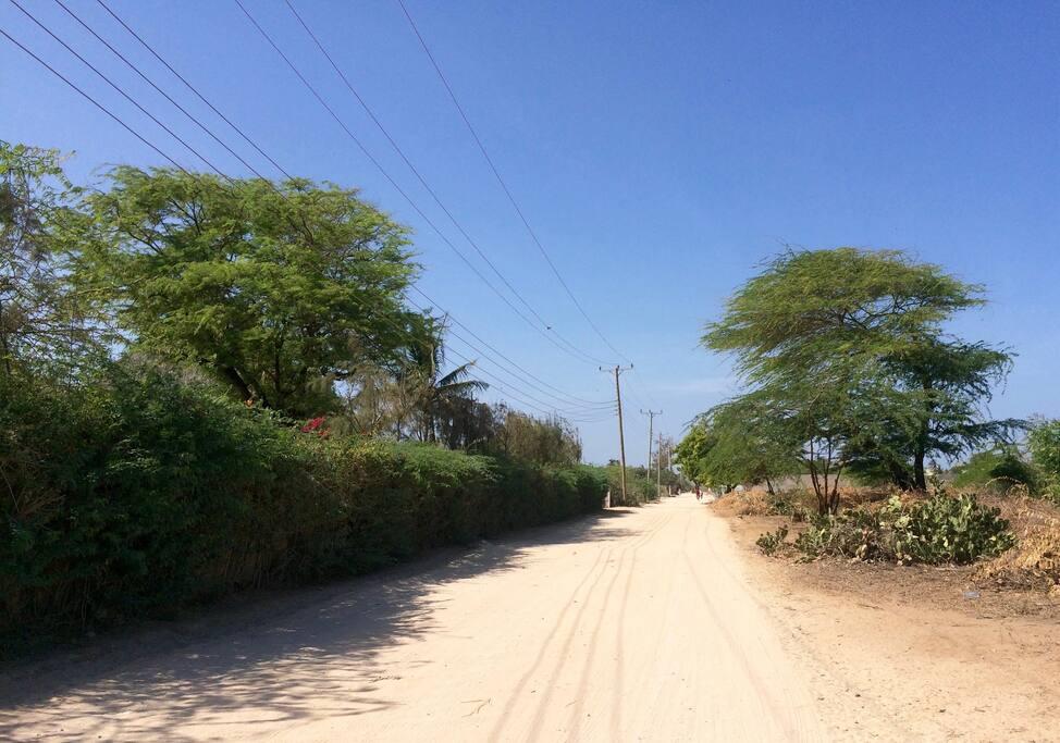 Access Road along the Coast