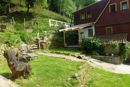 Ferienwohnung sächsische Schweiz - Bad Schandau - Apartament