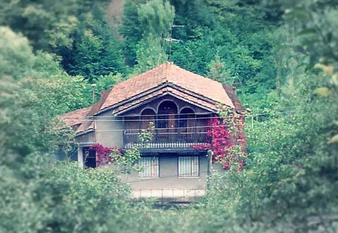 Home in Dilijan - Dilijan - House