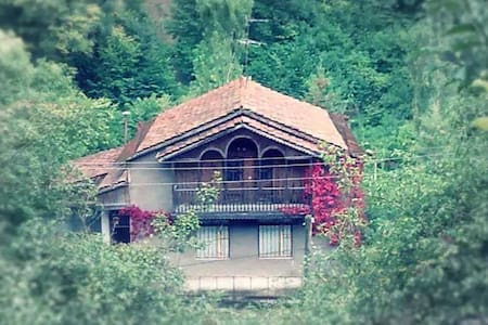 Home in Dilijan - Dilijan - Ház