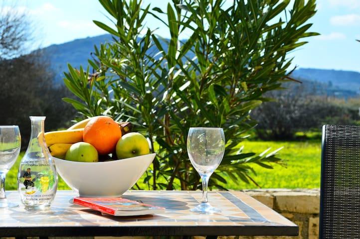 dining outdoor in the garden
