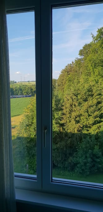view from guest room