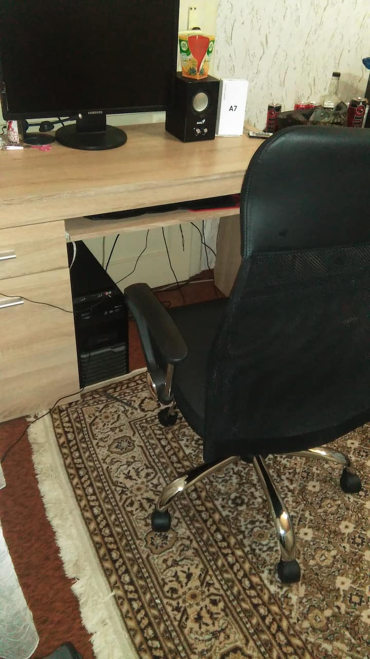 Monica studio