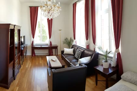 Charming Historical Apartment 1