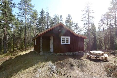 Trivelig skogshytte /Cozy cabin in the forest