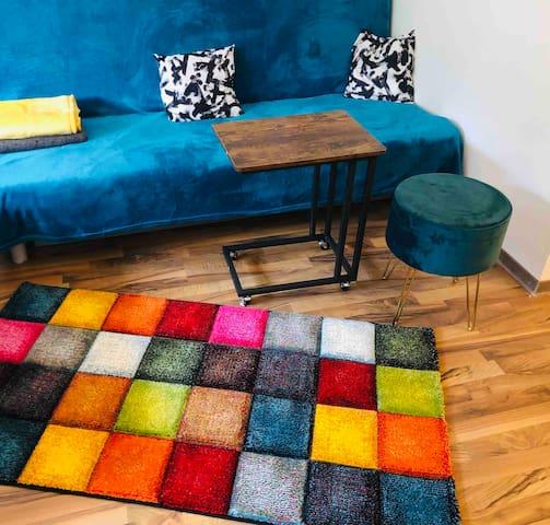 Cozy 1 room flat / Mainstation / Car rental