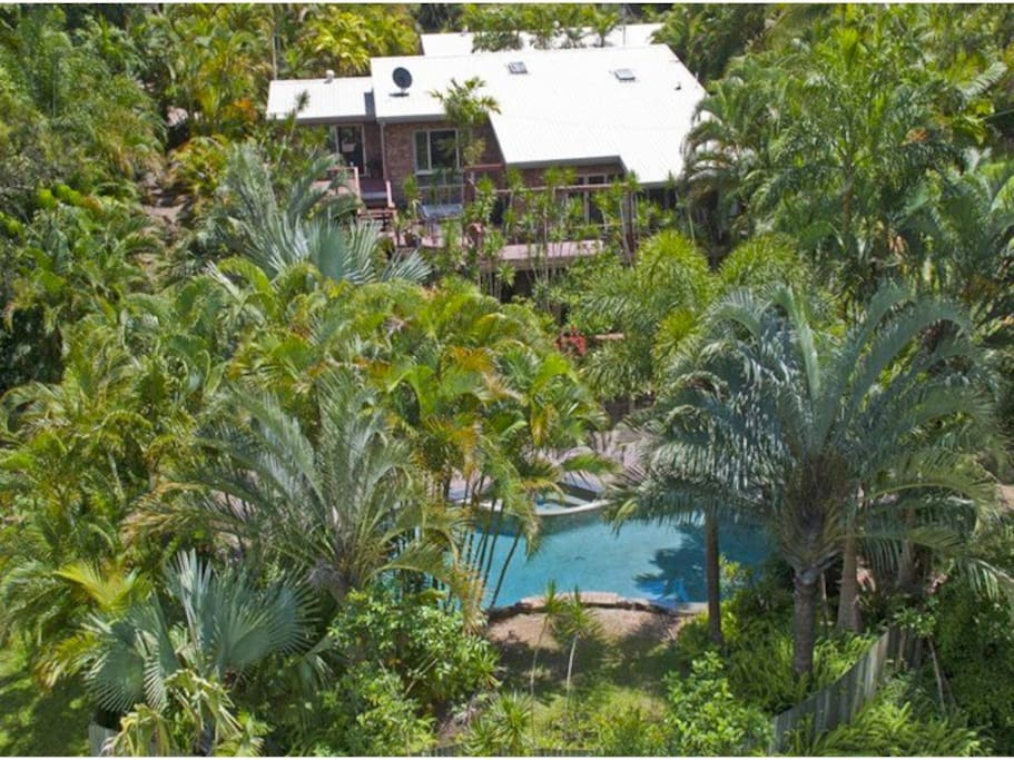 Aerial shot of tropical gardens and pool