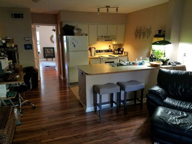 Luxury - Alachua County - Appartement