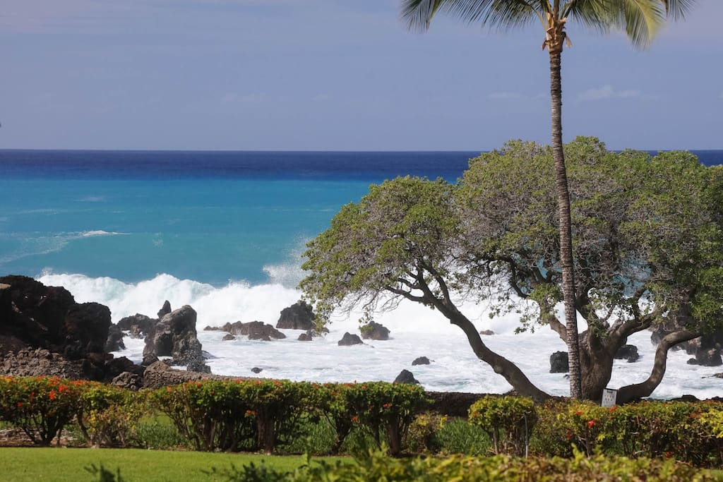 Walk down to little cove - on calm days snorkel from your back yard.
