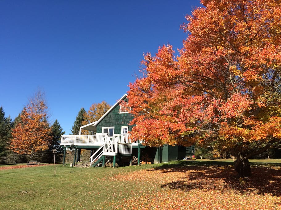 Front of the house in the fall.
