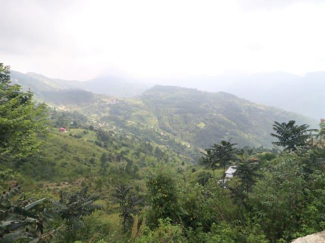 OYO - Lightening Deal! Hill-View 1BR Homestay in Shimla