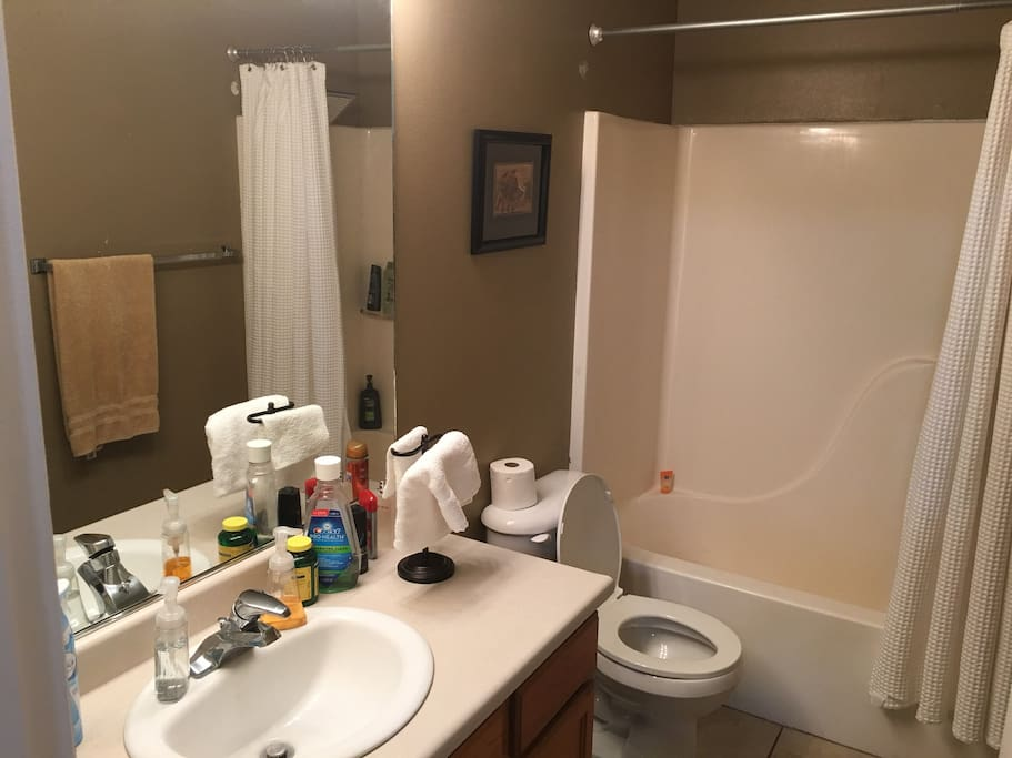 Attached Private Bathroom
