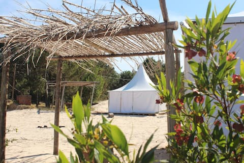 Glamping in 12 acre beachfront forest