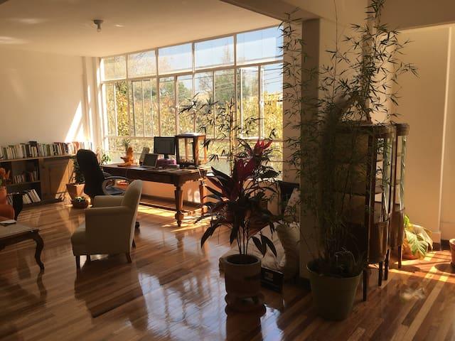 Fancy and cozy bedroom in artsy home