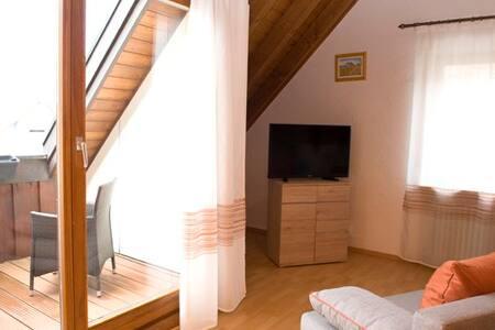 Nice Apartment TLA, Ferienwohnung - Landstuhl - Apartament