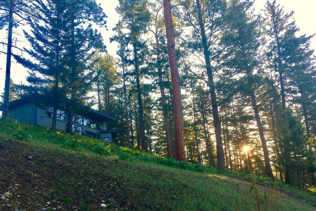 Nature House in Spring - situated high on the hill.  Peace, privacy, wildlife, and beautiful views.