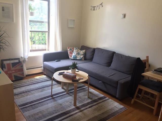 1 Bedroom apt. in the lower east side east village - Нью-Йорк - Квартира
