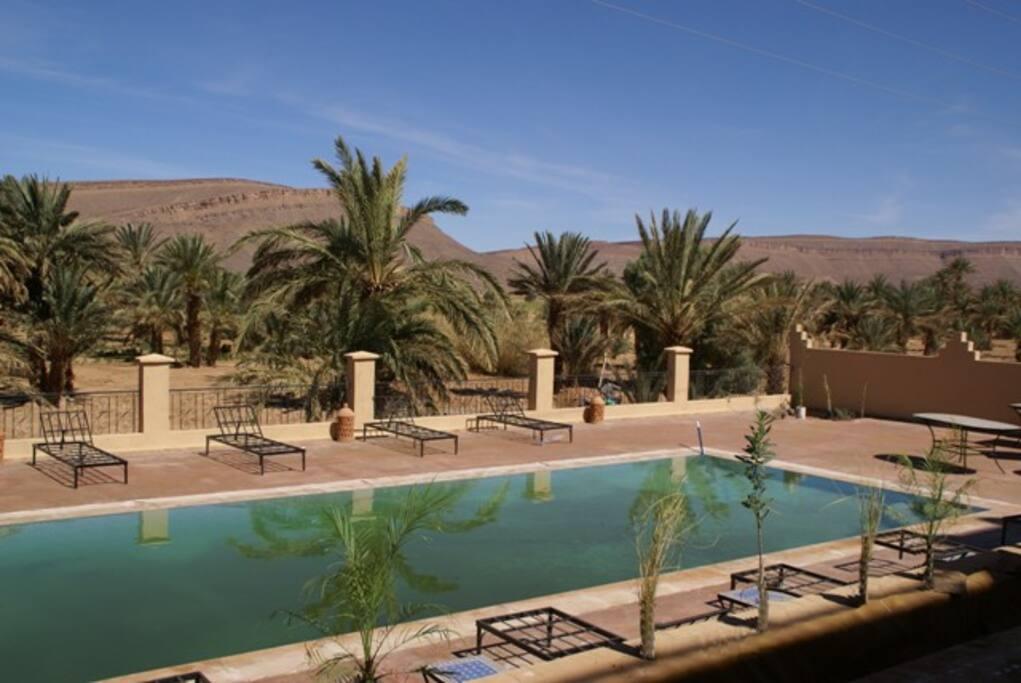 la piscine avec sa terrasse et sa vue sur la palmeraie et la montagne