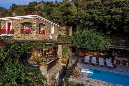 Luxurious villa private swimmingpoo - Villa