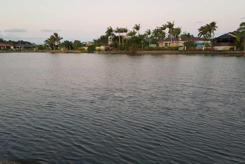 lake  full of fish