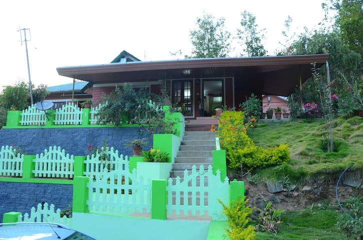 Familycare Homestay Munnar