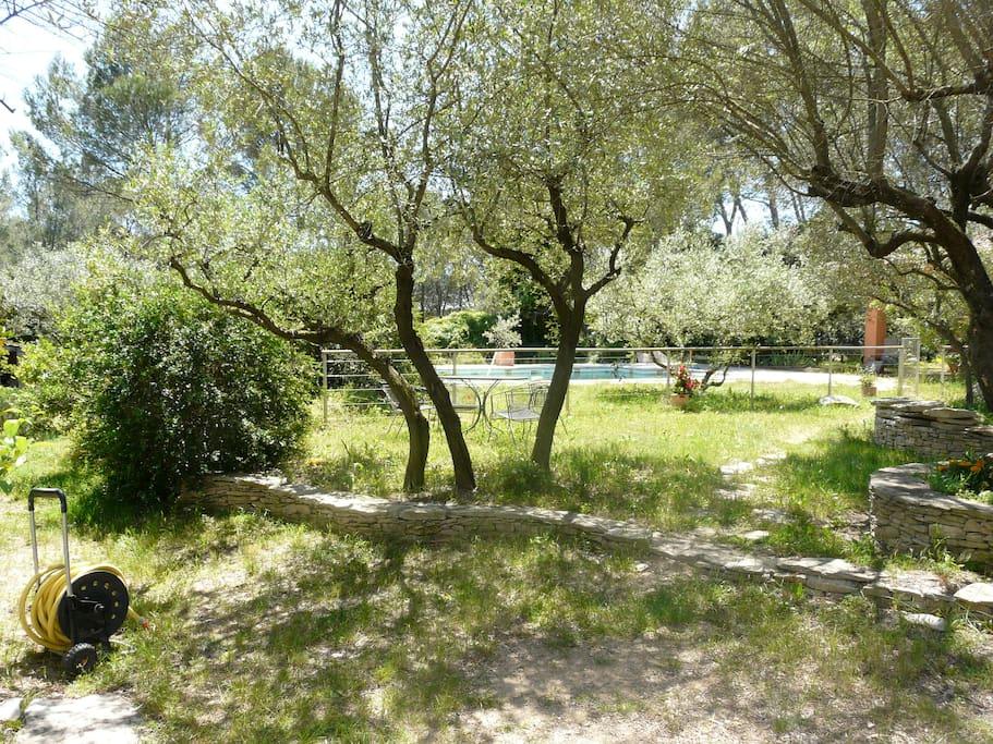 un grand jardin ombragé avec hamac pour des moments de détente