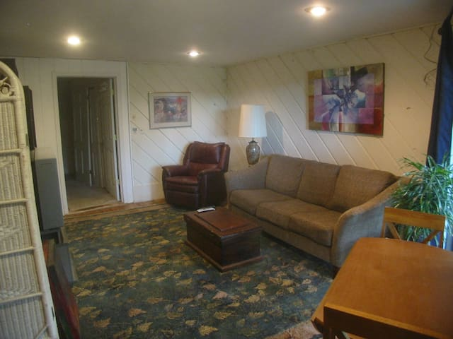 Looking in Living Room area
