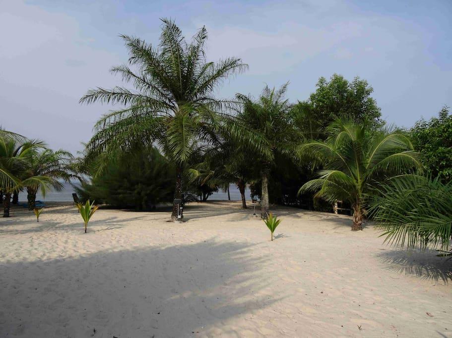 Vue de la résidence vers le terrain côté plage