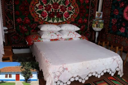 Exclusive holiday house in Malaesti, near Tiraspol