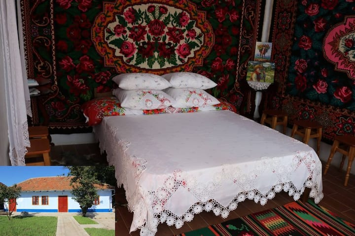 Exclusive holiday house in Malaesti, near Tiraspol