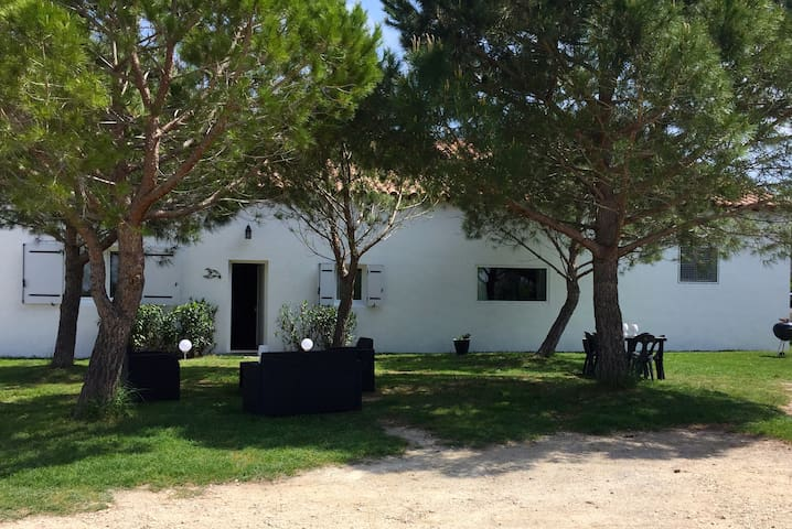 Beautiful and spacious Mas in Camargue.