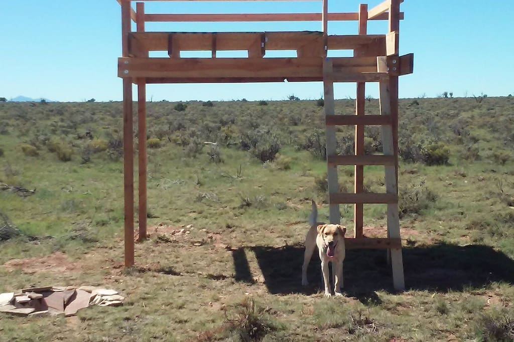 Observation Loft