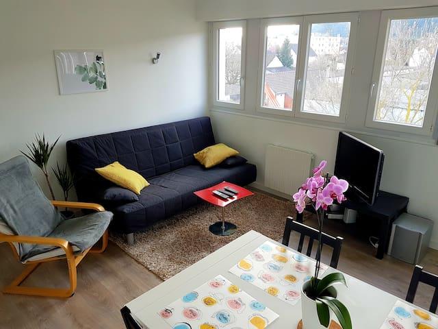 Appartement rénové lumineux proche centre ville