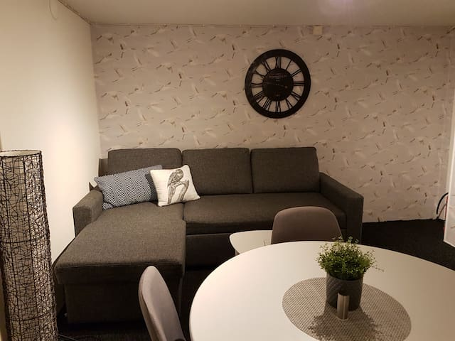 Newly renovated rooms in quiet and cozy area