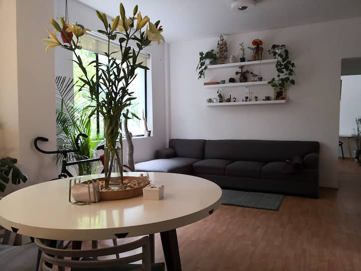Condesa Apartment with great spaces and service.