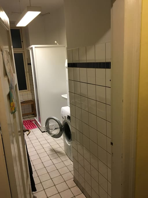 The bathroom (and washer and dryer).