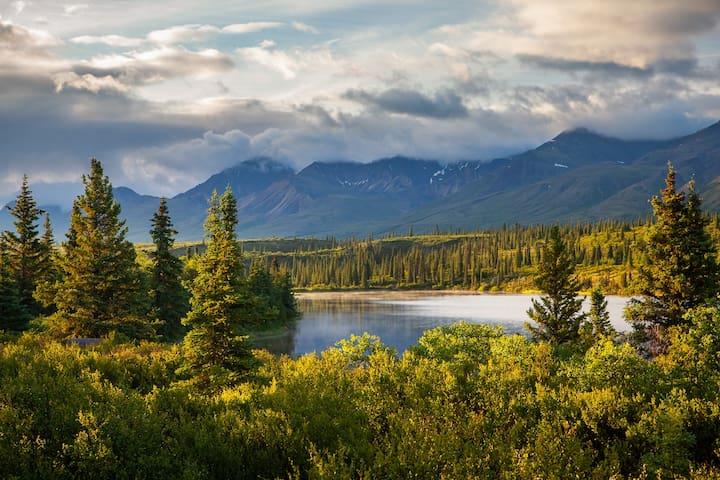 Denali-View Alaskan Cabin:  Hike, Bike, Fly Fish.
