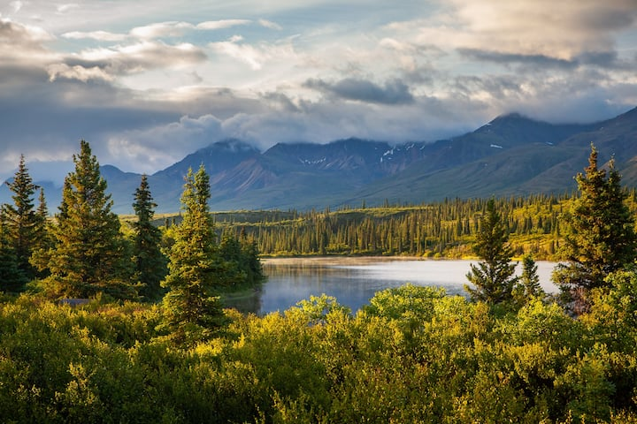 Denali-View Alaskan Cabin:  Hike, Bike, Fly Fish.