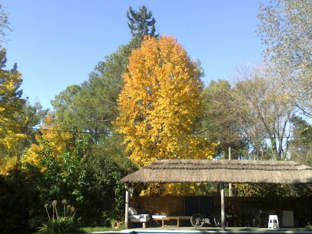 Hospedaje Sol y Sombra (familiar) - Loma Verde  - Haus