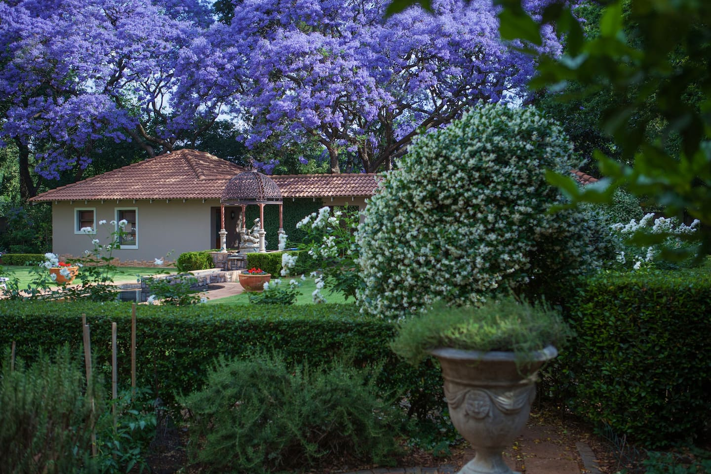 The Garden Apartment is nestled under the trees, very private from the rest of the guesthouse.