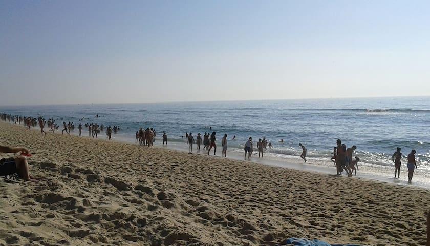 Casa de Praia (T2 para Férias) - Praia de Mira - Praia de Mira - House